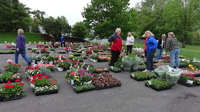 ANNUAL flower sale held every May